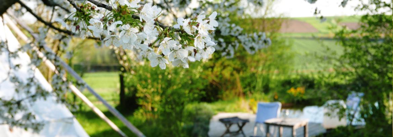 Lebenslustgarten Yoga Impressionen